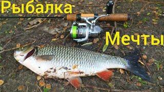 Как ловить голавля на майского жука на реке Десна рыбалка в июне 2021