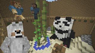 Minecraft Xbox | Hide & Seek - Giant Panda Habitat