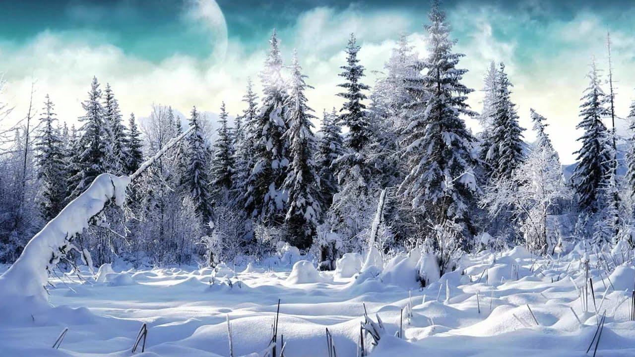 Vivaldi el invierno las cuatro estaciones salzburger for Imagenes de patios de invierno