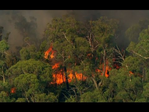 Horrific! Bush Fire Destruction in Australia - Australia with Simon Reeve - BBC
