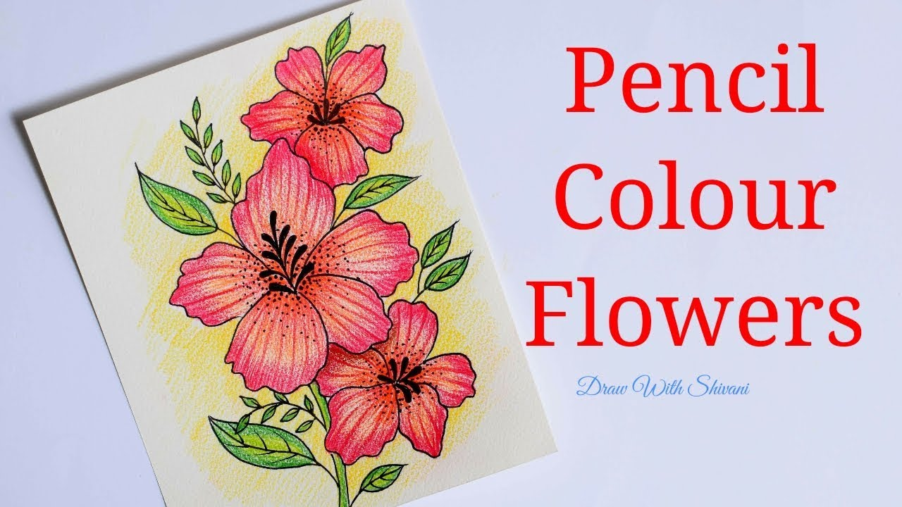 Easy Flowers Using Pencil Colors Colored Pencil Shading Flowers Youtube