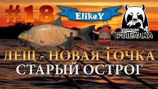 Лещ - Новая Точка! • Фарм серебра • Фидерная ловля • Старый Острог • Русская Рыбалка 4 #18