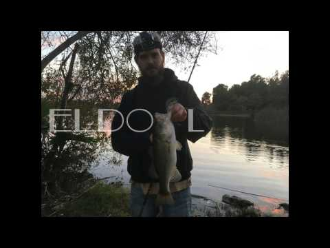 Winter Urban Bass Bank Fishing: El Dorado Park(Long Beach,CA)