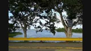 Viaje al Delta del Orinoco. Conoce a Venezuela