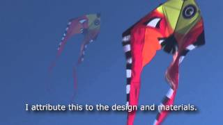 Three Batten Pyrodelta Fish Kite Tail Part 2 Thumbnail
