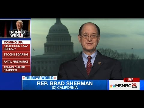 Congressman Sherman Discusses Russia, Trump, ISIS with MSNBC