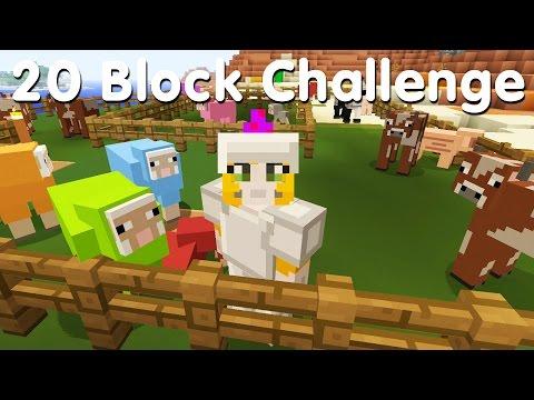 Minecraft PS4 - 20 Block Challenge - Rainbow Collection (17)