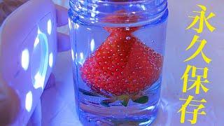 苺をクリスタルで固めてフルーツ飴作るホイ!! 【1億年後の子孫】 PDS