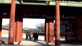 The Beauty Owl: Winter Holiday in Korea 2012 vlog 2 Thumbnail