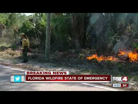 State of Emergency declared in Florida due to wildfires
