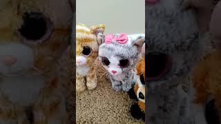 Animal friends episode (1)