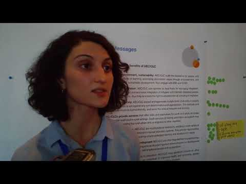 Adult Education and Development Conference, Tbilisi, October 2017  Interview with Lika Kutelia
