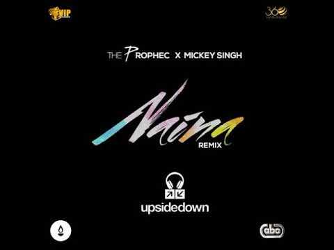 The Prophec - Naina Upsidedown Remix (2016)
