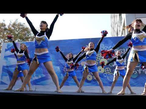 Cheerleading チア 大塚愛 さくらんぼ 早稲田大学チアダンスサークルMYNX 早稲田祭⑤