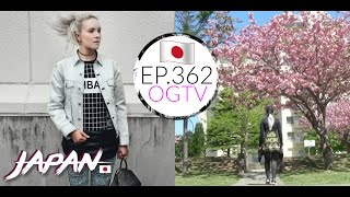 Exploring Thrift Stores And New Daiso In Towada | Life In Japan | AMWF | EP.362 Video