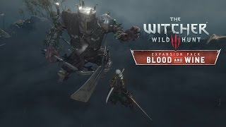 Playing Without HUD || The Witcher 3 : Wild Hunt