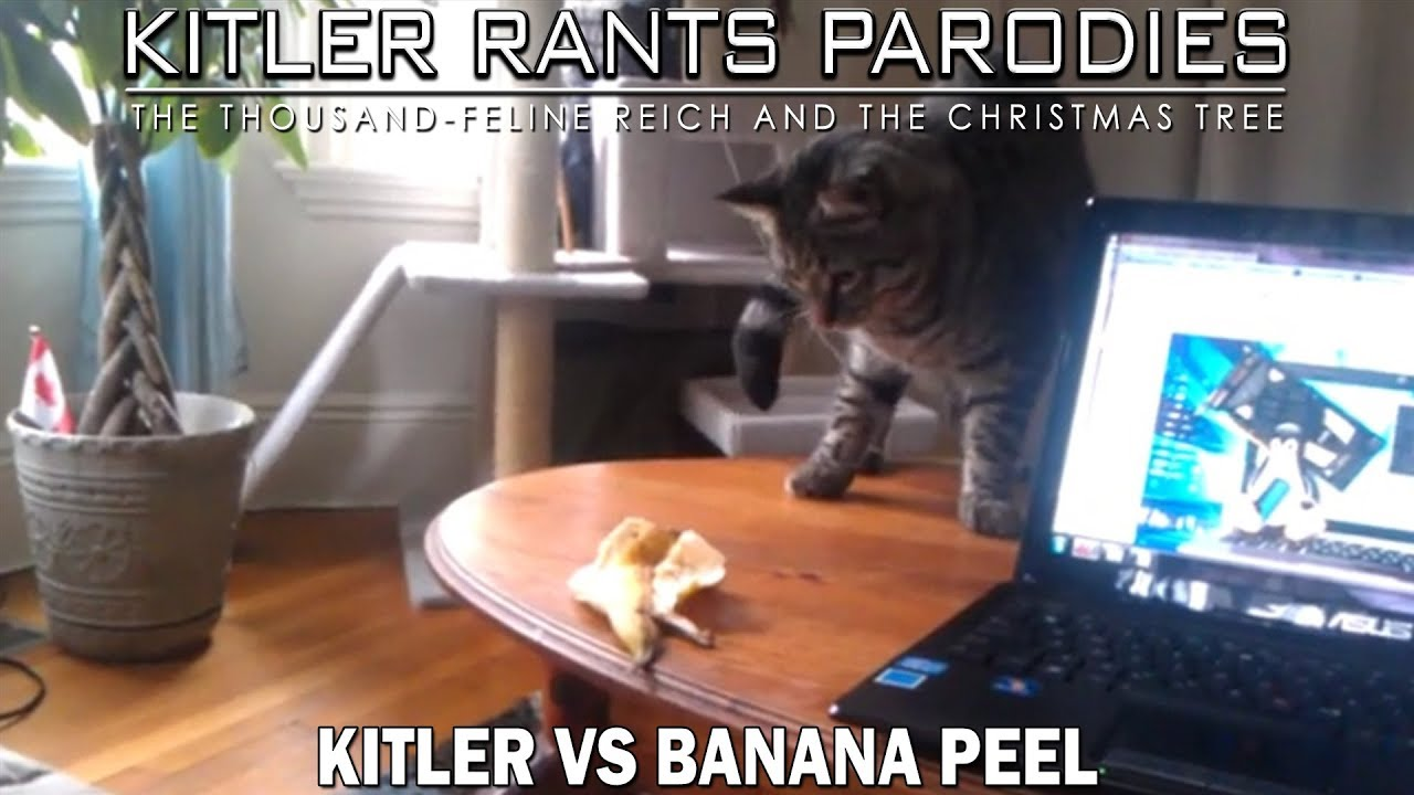 Kitler Vs Banana Peel