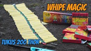 TEST WHIPE MAGIC TIKUS 10 BOX 200 THOR !! RIP TELINGA WKWK