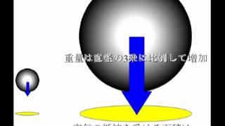ピサの斜塔から落としたサイズの異なる2つの金属球は同時に着地したと言...