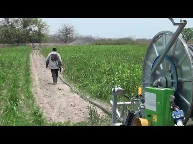Reactivando el Agro en Honduras