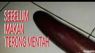 Video Pake Terong Mentah download MP3, 3GP, MP4, WEBM, AVI, FLV Oktober 2018