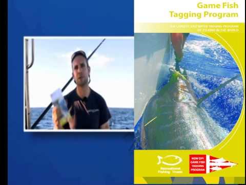 NSW DPI Game Fish Tagging Program