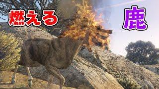 【GTA5】グラセフの七不思議!?燃える鹿! MP3