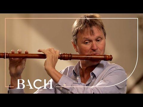 Bach - Flute Partita In A Minor BWV 1013 - Root | Netherlands Bach Society