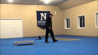 Nizzy (miniature Poodle) Dog Training Boot Camp Video