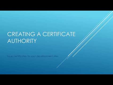 Creating a Certificate Authority and issuing a wilcard cert