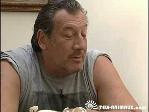 Jean-Claude Dreyfus gros cochon !