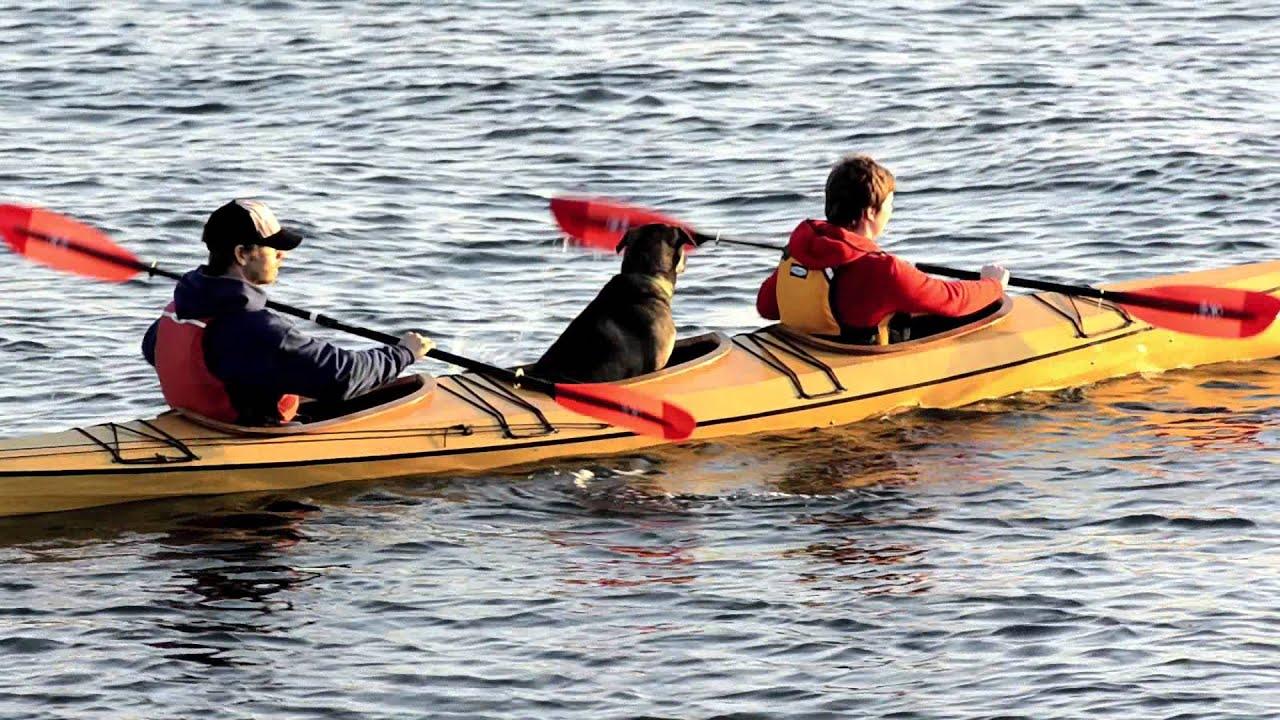 Pygmy Osprey Triple Kayak Kit