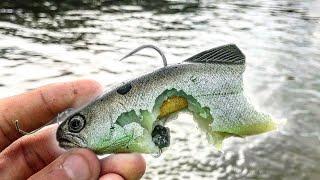 PIRANHA ARE VICIOUS! (Fishing the AMAZON!)