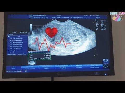 Моя первая беременность после ЭКО, но нет сердцебиения....