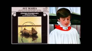 Daniel Perret boy soprano), et al,  sings Reger Mariae Wiegenlied, The Zurich Boys Choir