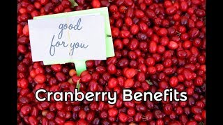 Cranberry Health Benefits for Your Whole Body - Heart and Thyroid Advantages of this Tart Fruit
