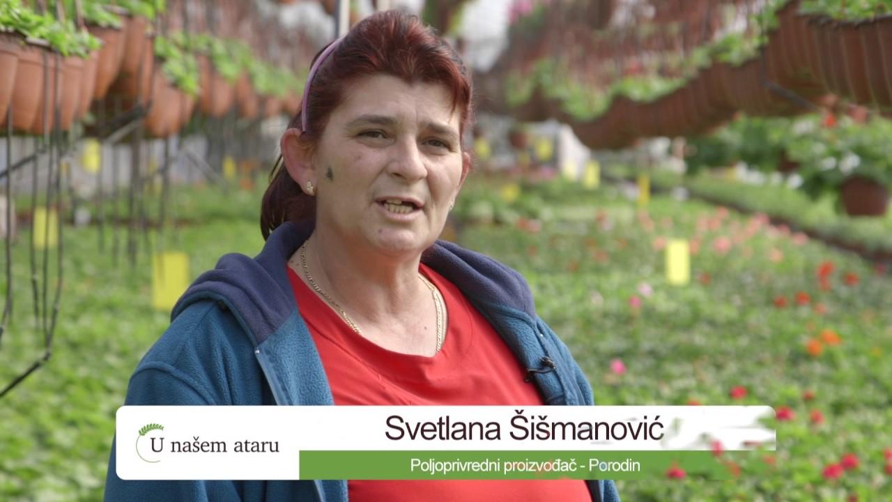 Zvezdana Jovanović - PSSS Požarevac - Proizvodnja cveca u Porodinu - U nasem ataru 681