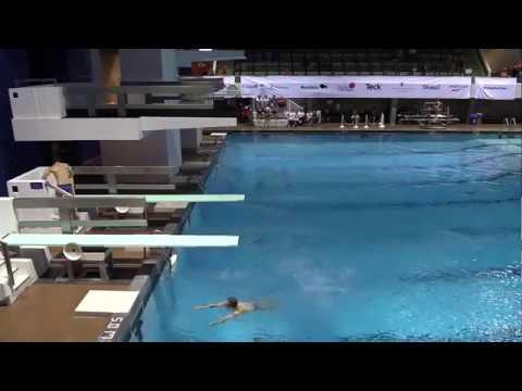 2017 Canada Summer Games - Diving Final - 1M Men