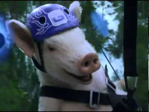 Geico Commercial -- Ziplining Pig Screams Wee