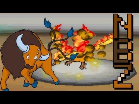 Nbz Vs fatalfate *RU* - Narrated Pokemon Black & White Wifi Battle #211