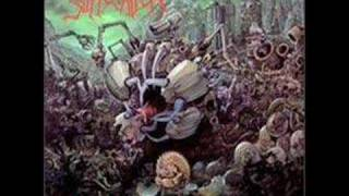 Suffocation - Mass Obliteration