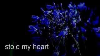 stole my heart ~ a 1D love storie