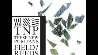 These New Puritans - Field of reeds (Full album)