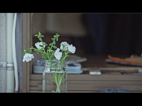 中 孝介 『花』Music Video 2016ver.