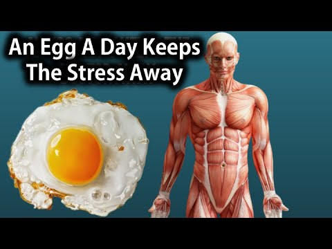7 Foods Which Help You De-Stress
