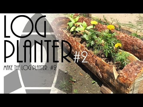 Make the log planter. #2