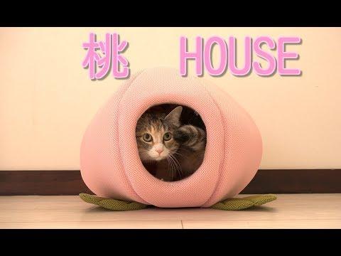 桃HOUSE