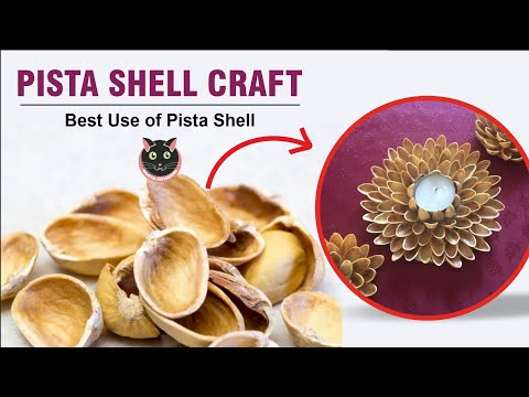 Best reuse idea of pista shell || best DIY out of wasted pista shell