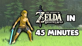 How to beat Breath of the Wild in 45 MINUTES