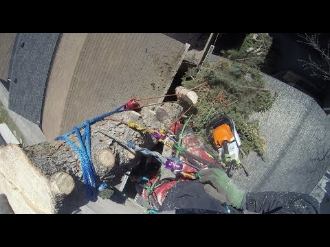 Douglas Fir removal in very tight location - Tree Climbing A